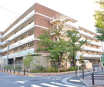 東かなまち桜園